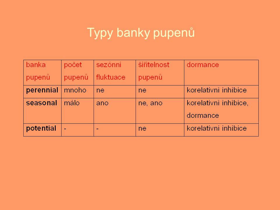 Typy banky pupenů