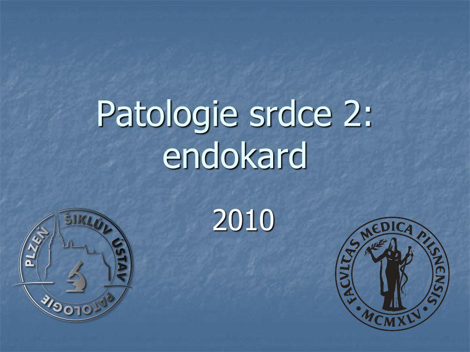 Patologie srdce 2: endokard 2010