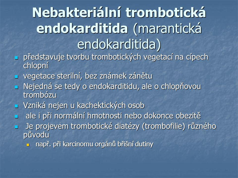 Nebakteriální trombotická endokarditida (marantická endokarditida) představuje tvorbu trombotických vegetací na cípech chlopní představuje tvorbu trom