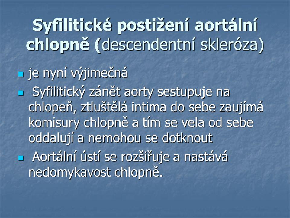 Syfilitické postižení aortální chlopně (descendentní skleróza) je nyní výjimečná je nyní výjimečná Syfilitický zánět aorty sestupuje na chlopeň, ztluš