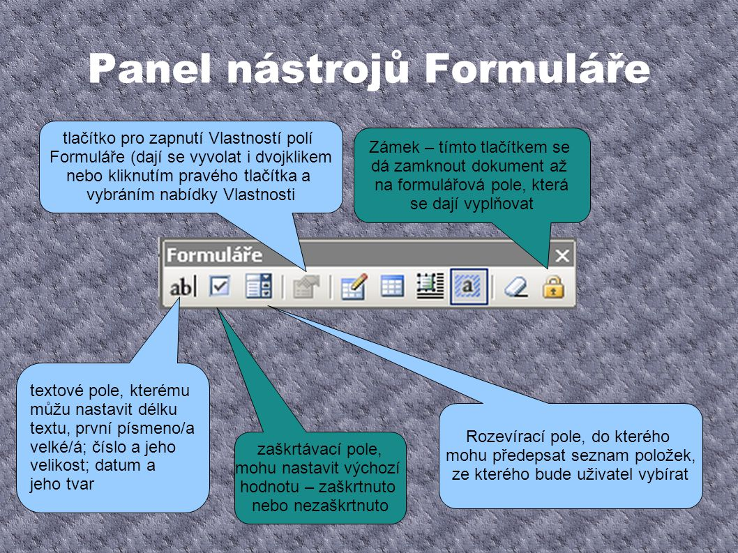 Panel nástrojů Formuláře textové pole, kterému můžu nastavit délku textu, první písmeno/a velké/á; číslo a jeho velikost; datum a jeho tvar zaškrtávac