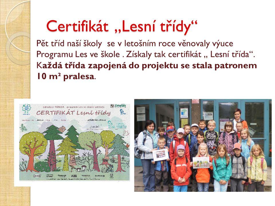 """Certifikát """"Lesní třídy"""" Pět tříd naší školy se v letošním roce věnovaly výuce Programu Les ve škole. Získaly tak certifikát """" Lesní třída"""". Každá tří"""