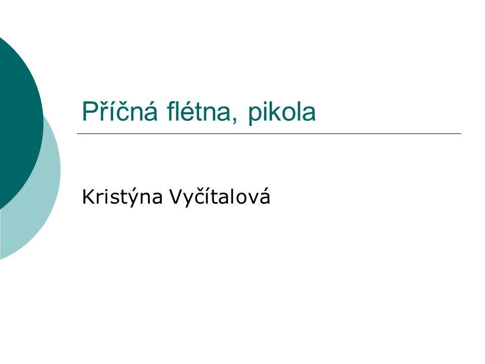 Příčná flétna, pikola Kristýna Vyčítalová