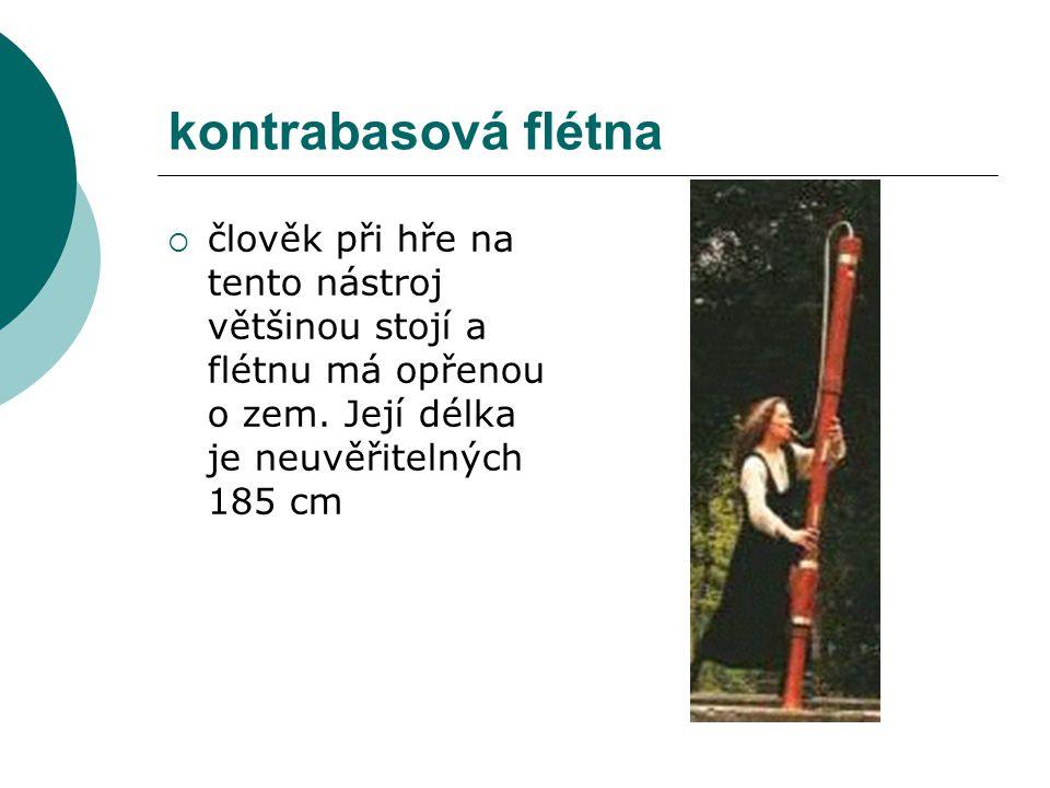 kontrabasová flétna  člověk při hře na tento nástroj většinou stojí a flétnu má opřenou o zem. Její délka je neuvěřitelných 185 cm