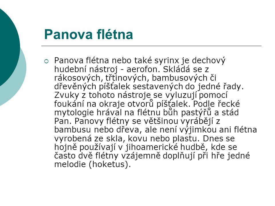 Panova flétna  Panova flétna nebo také syrinx je dechový hudební nástroj - aerofon. Skládá se z rákosových, třtinových, bambusových či dřevěných píšť