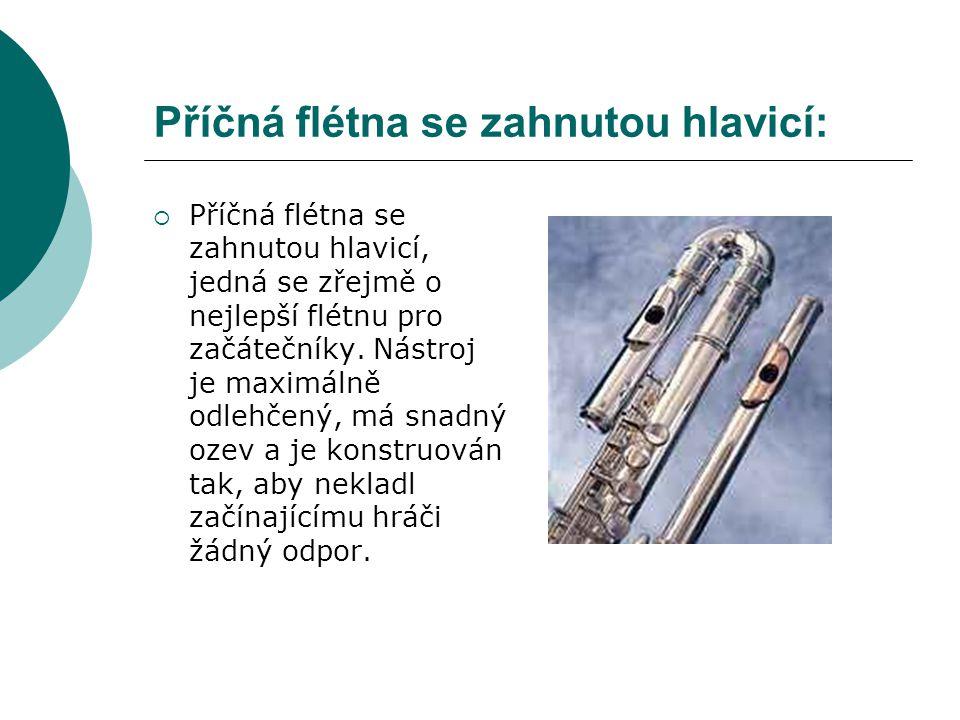 Příčná flétna se zahnutou hlavicí:  Příčná flétna se zahnutou hlavicí, jedná se zřejmě o nejlepší flétnu pro začátečníky. Nástroj je maximálně odlehč