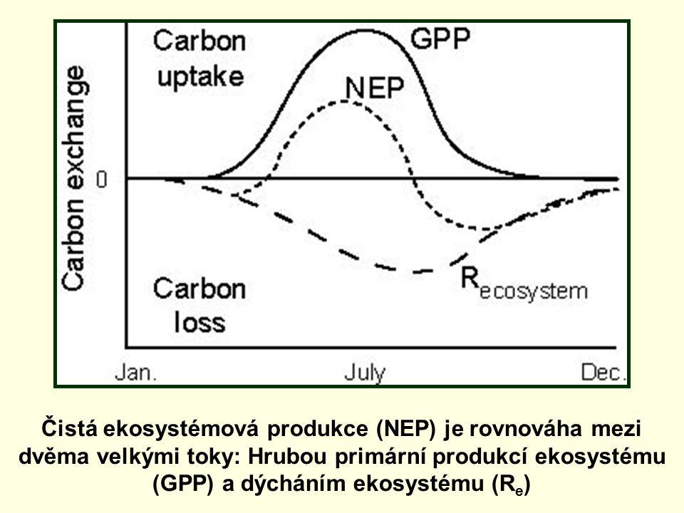 Čistá ekosystémová produkce (NEP) je rovnováha mezi dvěma velkými toky: Hrubou primární produkcí ekosystému (GPP) a dýcháním ekosystému (R e )
