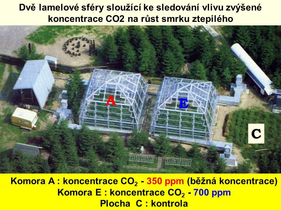 A C E Komora A : koncentrace CO 2 - 350 ppm (běžná koncentrace) Komora E : koncentrace CO 2 - 700 ppm Plocha C : kontrola Dvě lamelové sféry sloužící