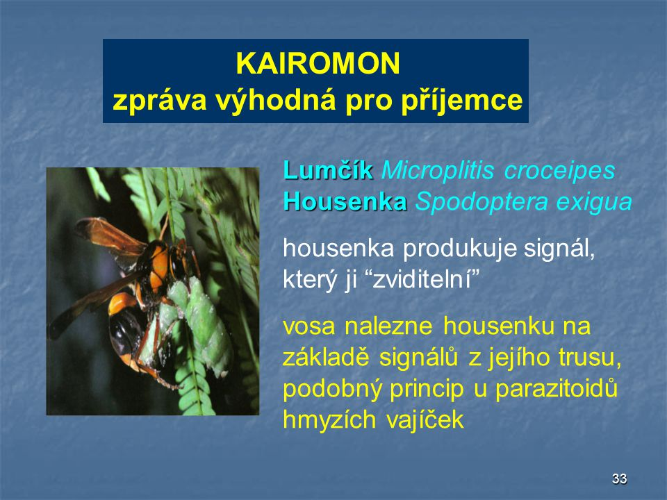 33 KAIROMON zpráva výhodná pro příjemce KAIROMON zpráva výhodná pro příjemce Lumčík Housenka Lumčík Microplitis croceipes Housenka Spodoptera exigua h