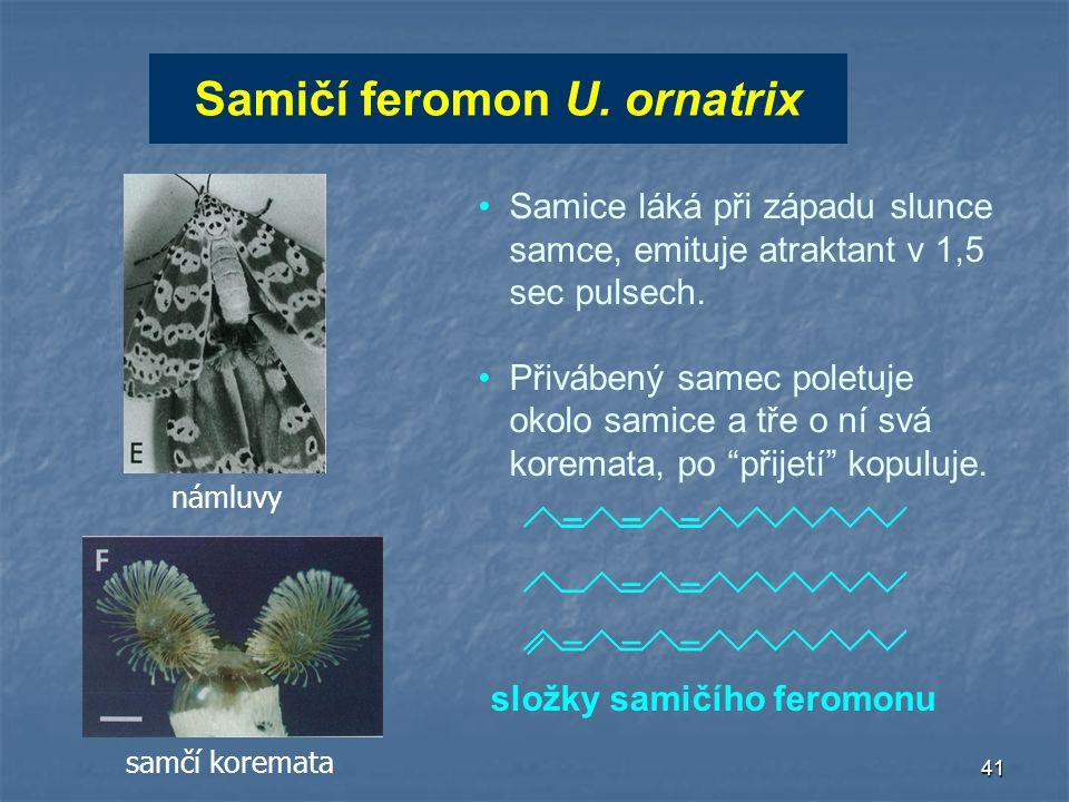 41 Samičí feromon U. ornatrix složky samičího feromonu Samice láká při západu slunce samce, emituje atraktant v 1,5 sec pulsech. Přivábený samec polet