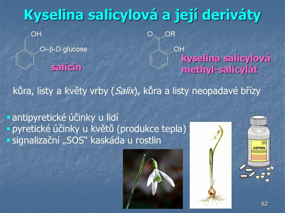 52 Kyselina salicylová a její deriváty kůra, listy a květy vrby (Salix), kůra a listy neopadavé břízy salicin kyselina salicylová methyl-salicylát  a
