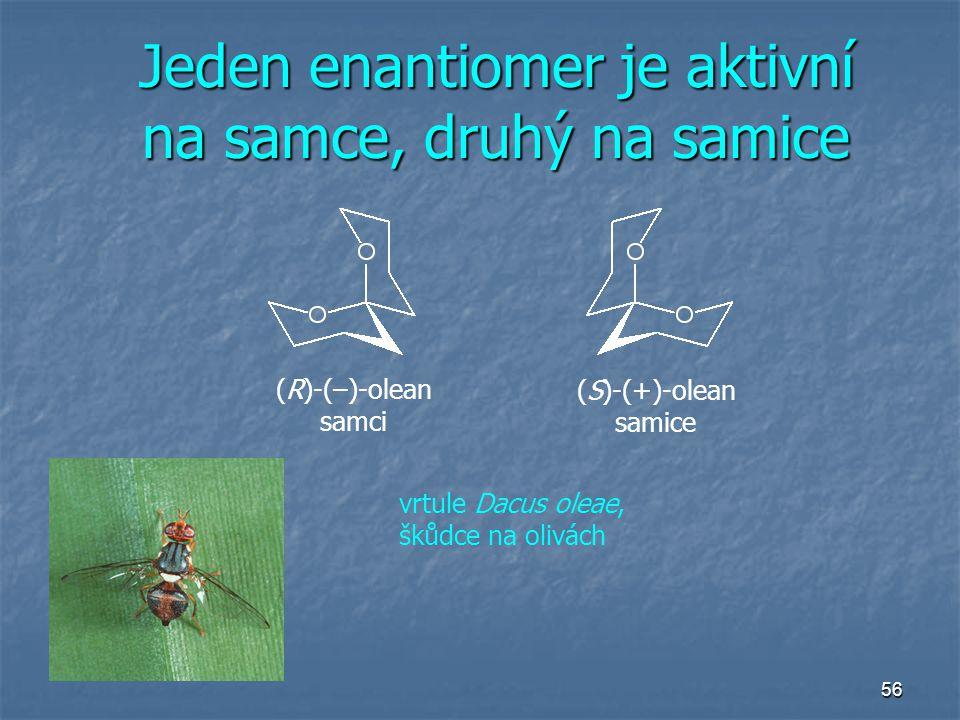 56 Jeden enantiomer je aktivní na samce, druhý na samice (R)-(–)-olean samci (S)-(+)-olean samice vrtule Dacus oleae, škůdce na olivách