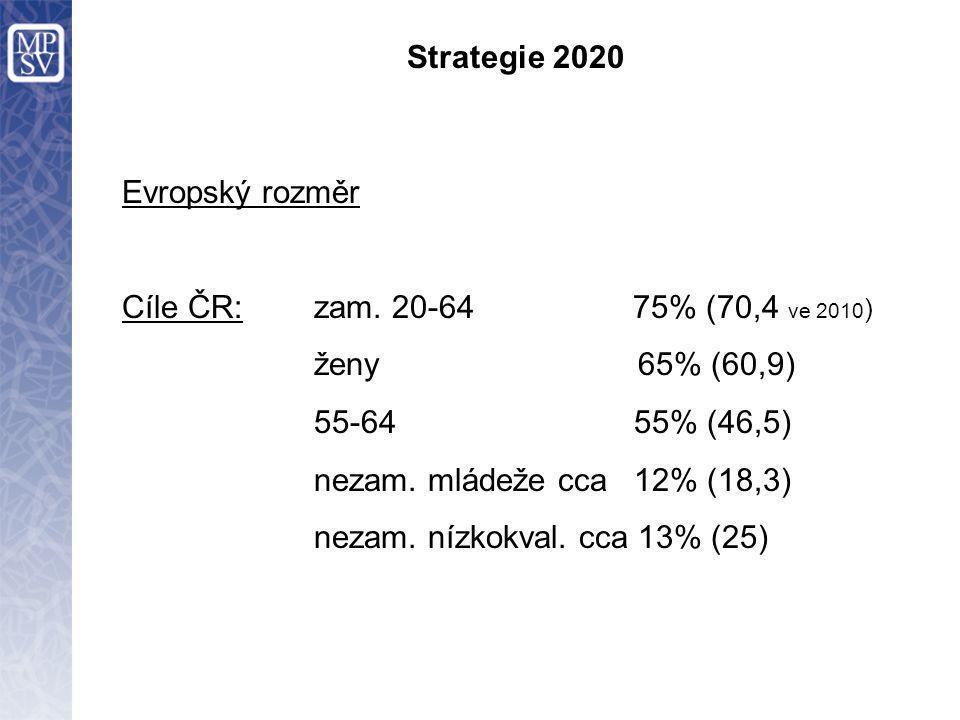 Strategie 2020 Záruka pro mladé: kvalitní zaměstnání, další vzdělávání (odborná příprava s kvalifikací), učňovský program, stáž do 4 měsíců po ukončení formálního vzdělávání nebo od začátku nezaměstnanosti 6 mld.