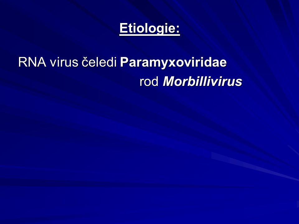 Etiologie: RNA virus čeledi Paramyxoviridae rod Morbillivirus rod Morbillivirus