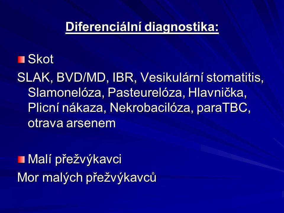 Diferenciální diagnostika: Skot SLAK, BVD/MD, IBR, Vesikulární stomatitis, Slamonelóza, Pasteurelóza, Hlavnička, Plicní nákaza, Nekrobacilóza, paraTBC