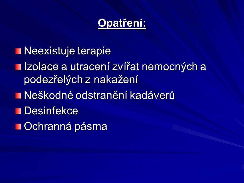 Opatření: Neexistuje terapie Izolace a utracení zvířat nemocných a podezřelých z nakažení Neškodné odstranění kadáverů Desinfekce Ochranná pásma