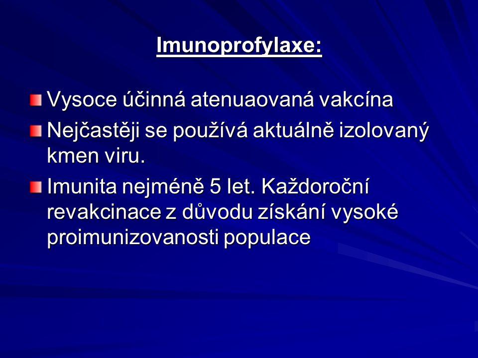 Imunoprofylaxe: Vysoce účinná atenuaovaná vakcína Nejčastěji se používá aktuálně izolovaný kmen viru. Imunita nejméně 5 let. Každoroční revakcinace z