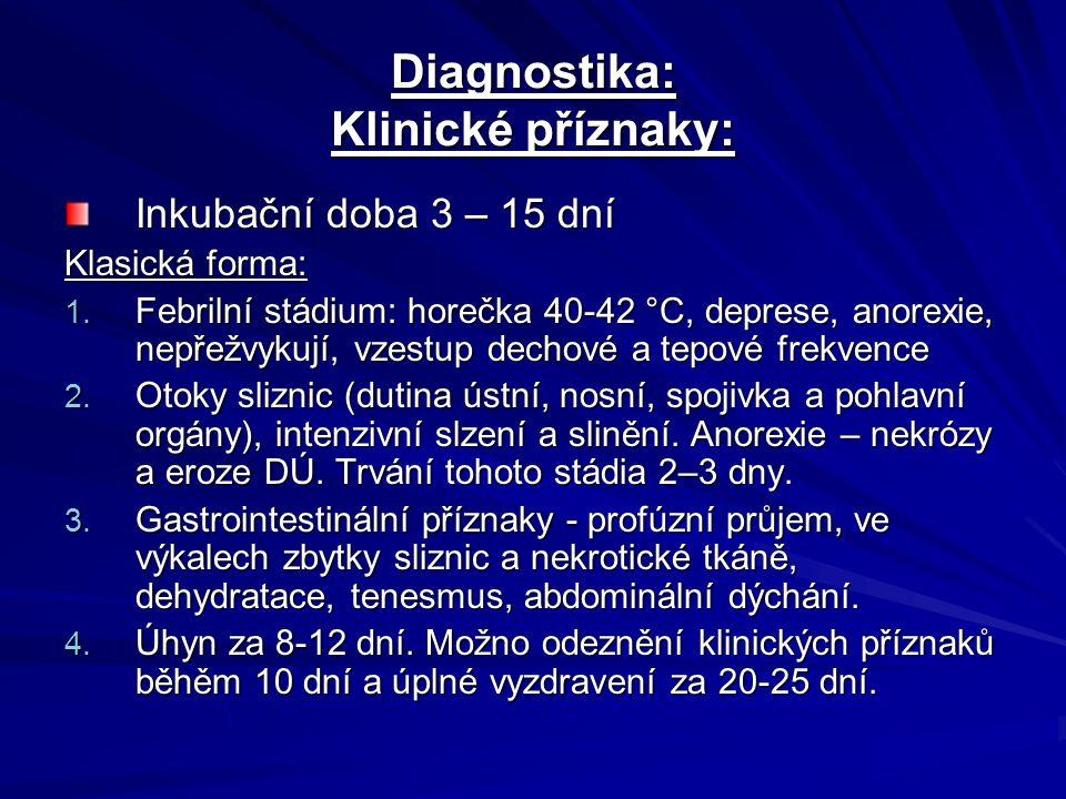 Diagnostika: Klinické příznaky: Inkubační doba 3 – 15 dní Klasická forma: 1. Febrilní stádium: horečka 40-42 °C, deprese, anorexie, nepřežvykují, vzes