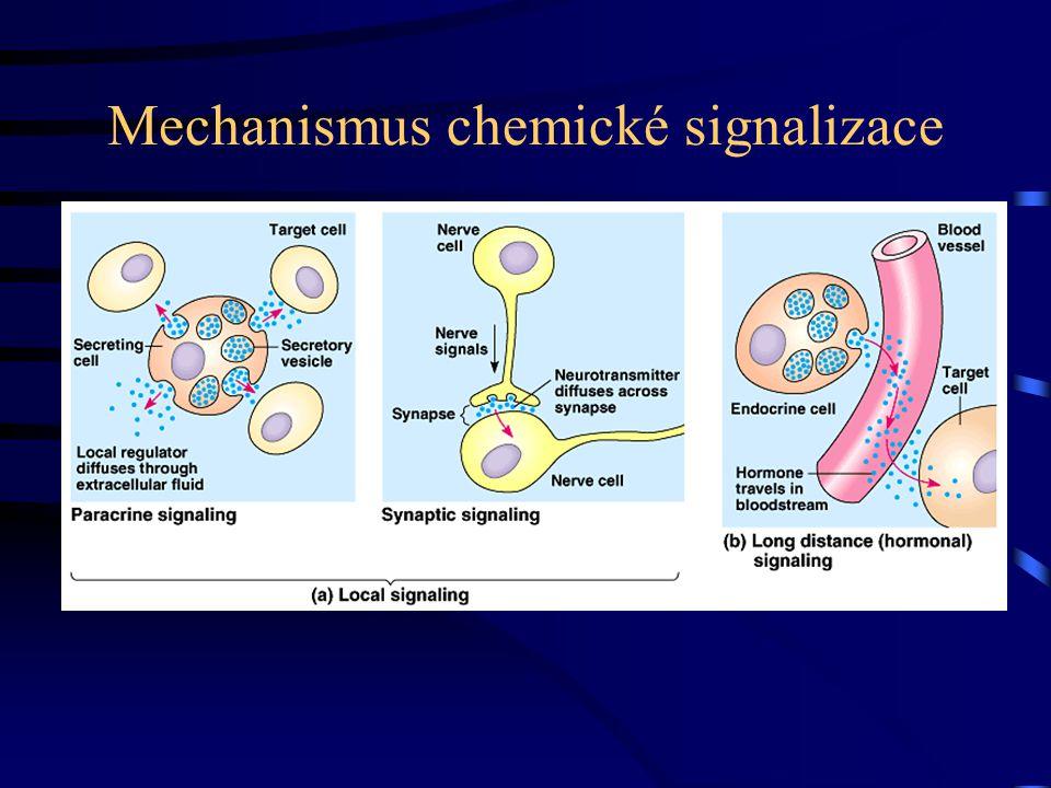Mechanismus chemické signalizace