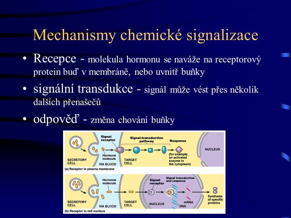 Mechanismy chemické signalizace Recepce - molekula hormonu se naváže na receptorový protein buď v membráně, nebo uvnitř buňky signální transdukce - si
