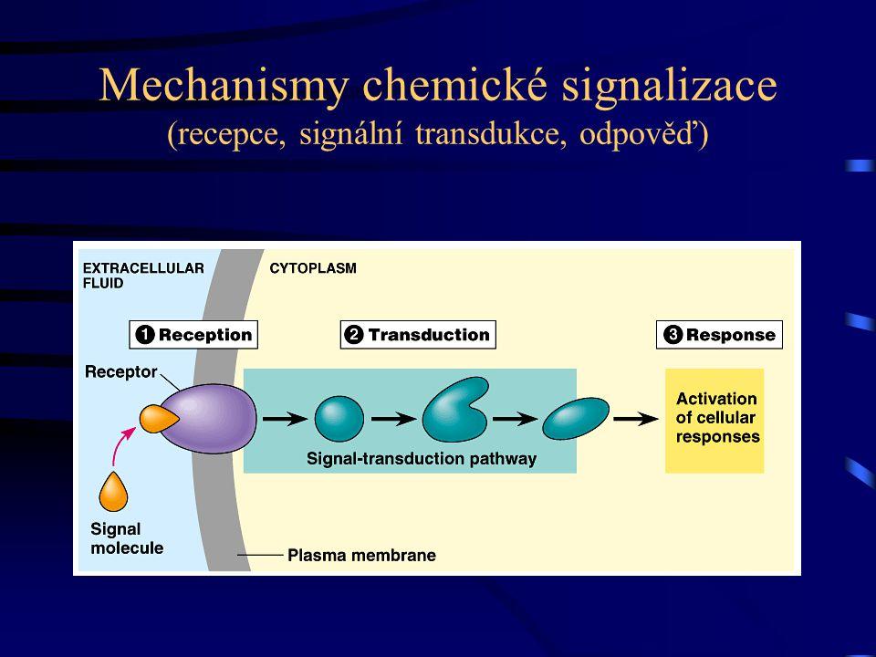 Mechanismy chemické signalizace (recepce, signální transdukce, odpověď)