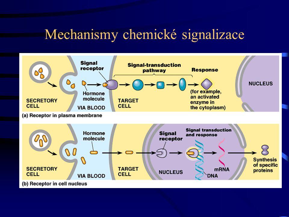 Mechanismy chemické signalizace