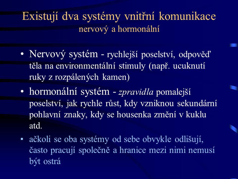 Endokrinní systém Endokrinní systém je tvořen všemi buňkami těla, které vylučují hormony endokrinní žlázy (=žlázy s vnitřní sekrecí) - nemají vyústění, hormony vylučují přímo do tělních tekutin exokrinní žlázy (žlázy s vnější sekrecí) - mají kanálky, které vylučují produkty těchto žláz na příslušná místa (žlázy potní, mléčné, slinné atd.)