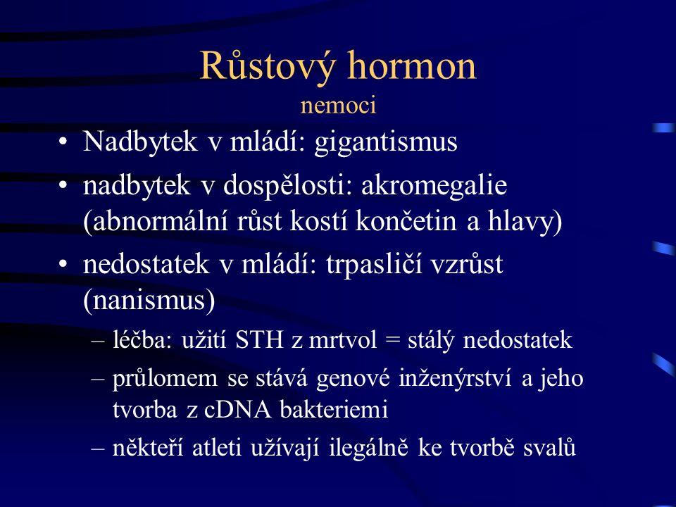 Růstový hormon nemoci Nadbytek v mládí: gigantismus nadbytek v dospělosti: akromegalie (abnormální růst kostí končetin a hlavy) nedostatek v mládí: tr