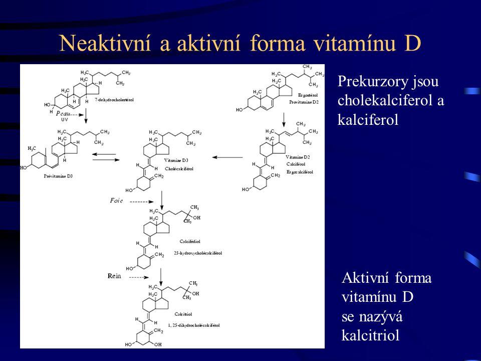 Neaktivní a aktivní forma vitamínu D Aktivní forma vitamínu D se nazývá kalcitriol Prekurzory jsou cholekalciferol a kalciferol