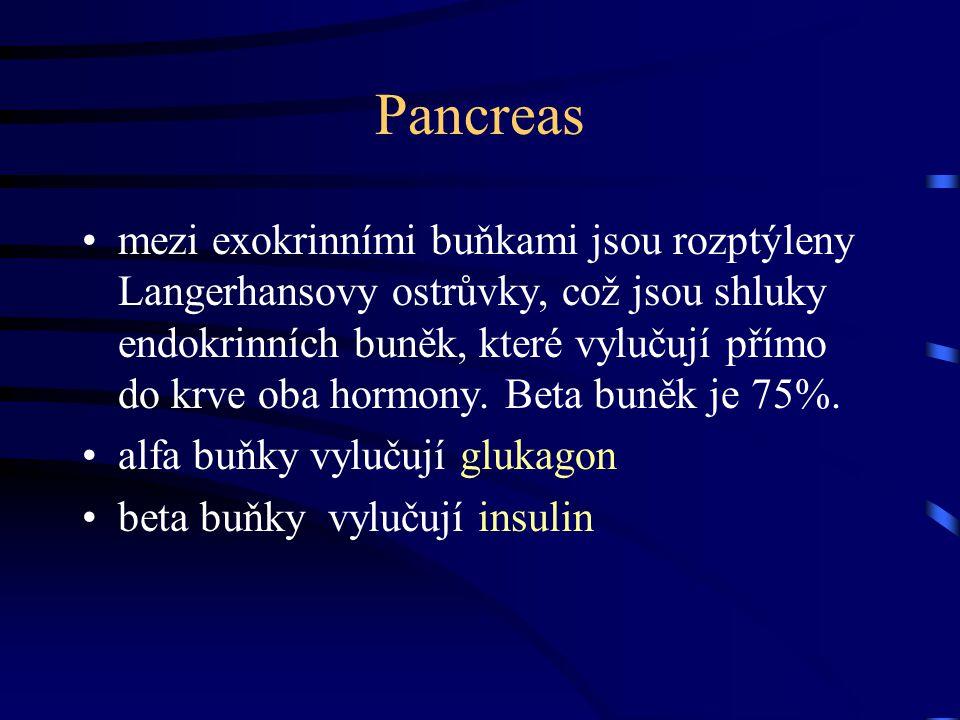Pancreas mezi exokrinními buňkami jsou rozptýleny Langerhansovy ostrůvky, což jsou shluky endokrinních buněk, které vylučují přímo do krve oba hormony