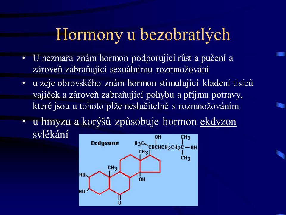 Adenohypofýza