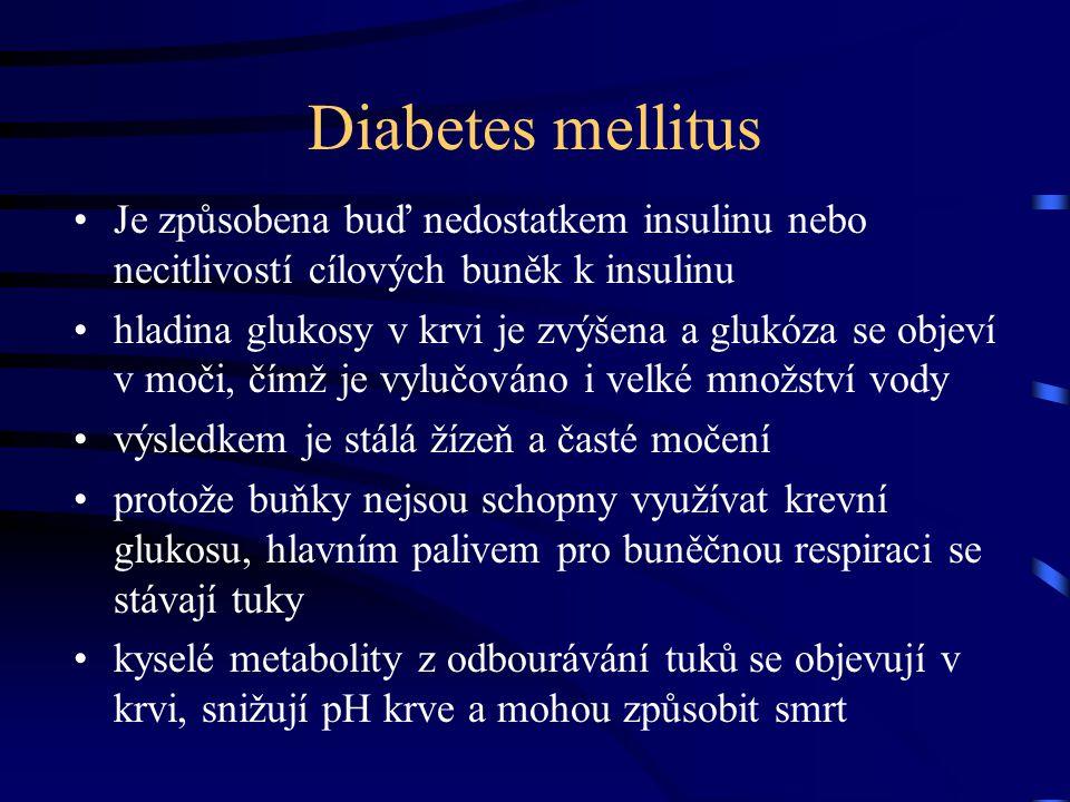 Diabetes mellitus Je způsobena buď nedostatkem insulinu nebo necitlivostí cílových buněk k insulinu hladina glukosy v krvi je zvýšena a glukóza se obj