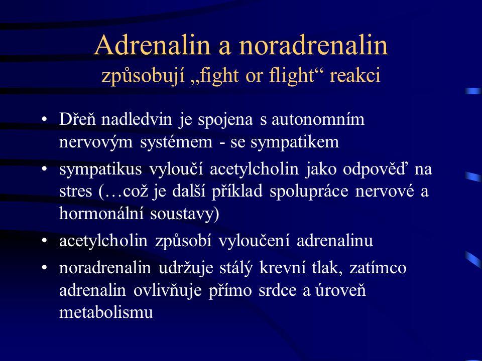 Dřeň nadledvin je spojena s autonomním nervovým systémem - se sympatikem sympatikus vyloučí acetylcholin jako odpověď na stres (…což je další příklad