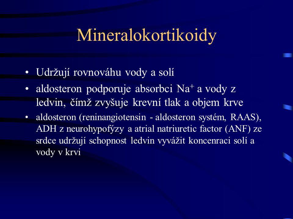 Mineralokortikoidy Udržují rovnováhu vody a solí aldosteron podporuje absorbci Na + a vody z ledvin, čímž zvyšuje krevní tlak a objem krve aldosteron