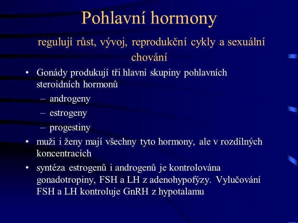 Pohlavní hormony regulují růst, vývoj, reprodukční cykly a sexuální chování Gonády produkují tři hlavní skupiny pohlavních steroidních hormonů –androg