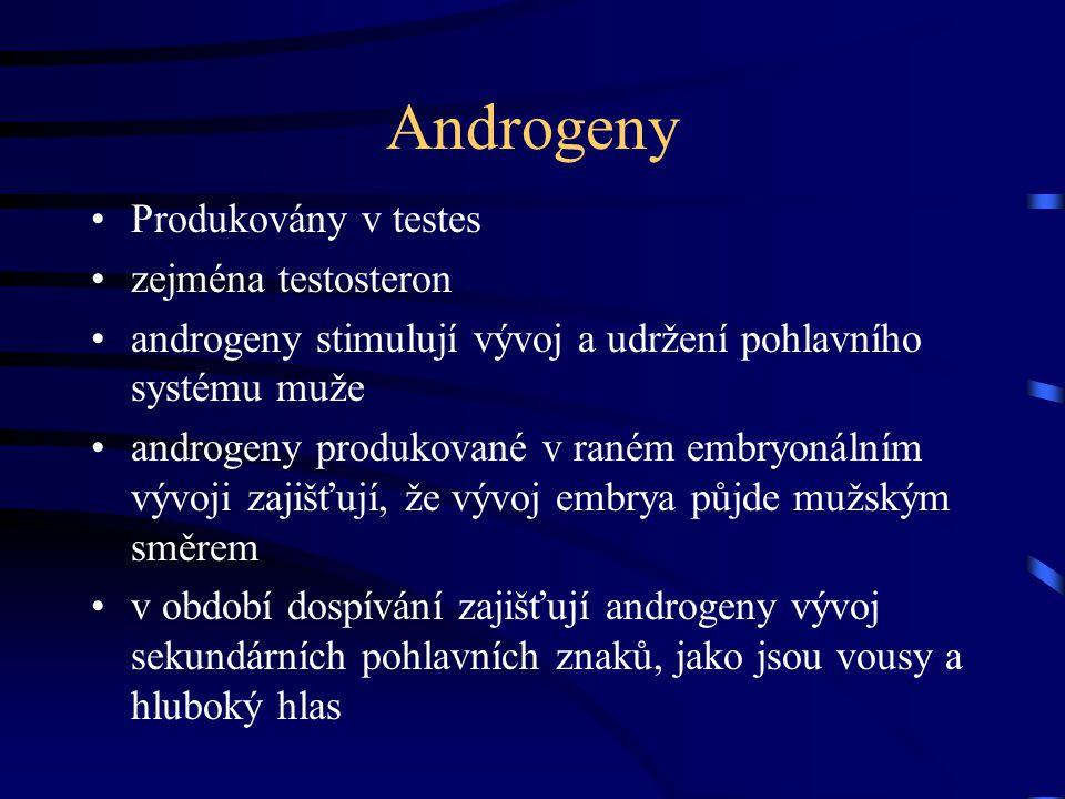 Androgeny Produkovány v testes zejména testosteron androgeny stimulují vývoj a udržení pohlavního systému muže androgeny produkované v raném embryonál