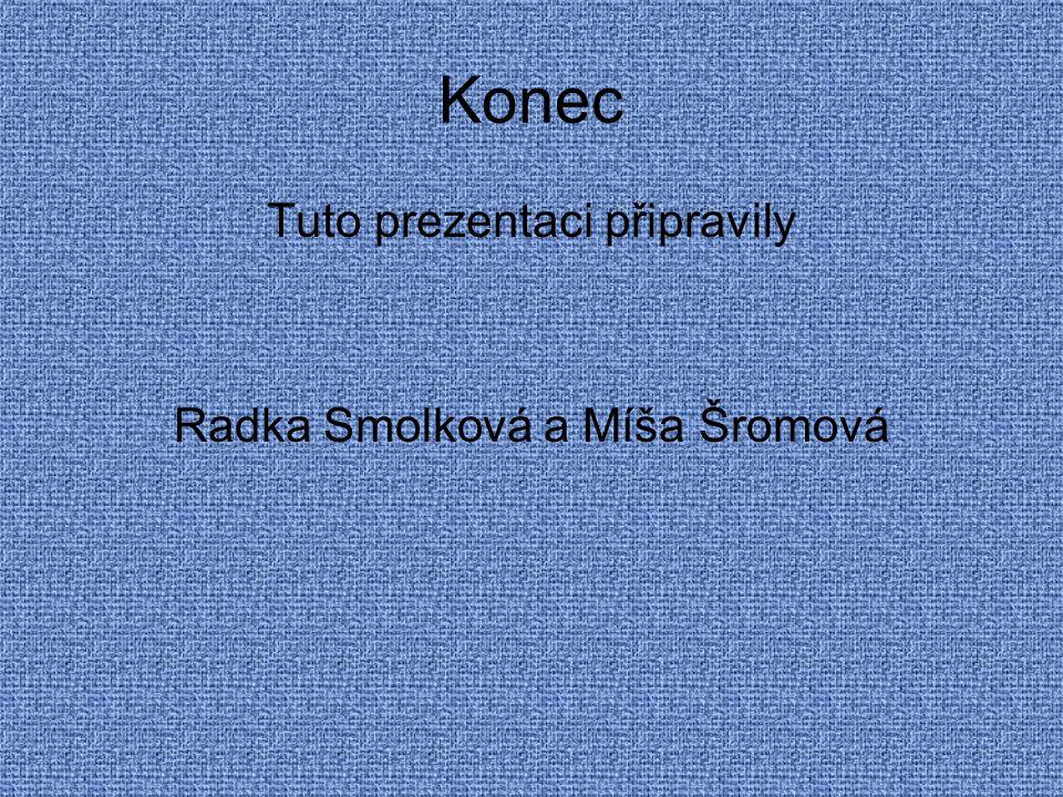 Konec Tuto prezentaci připravily Radka Smolková a Míša Šromová