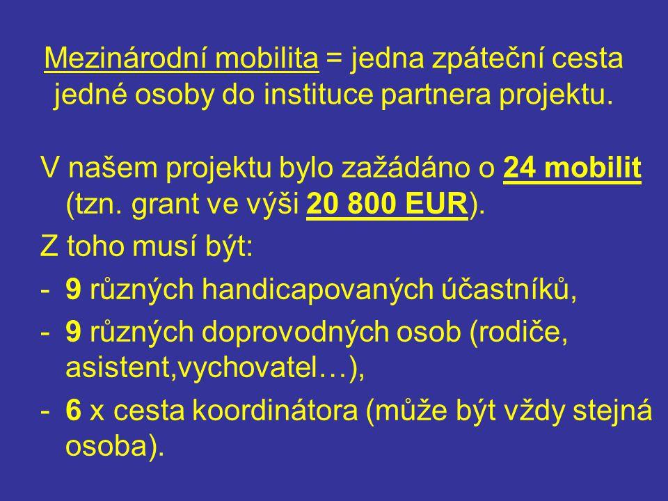 Předběžný plán mobilit: -Říjen 2009 – schůzka koordinátorů v Londýně, -Březen 2010 – výjezd z ČR do jedné ze tří zemí (IT, TR nebo PT), -Červenec 2010 – přijedou k nám účastníci projektu ze dvou zemí (PT, TR, IT nebo UK), -Říjen 2010 – výjezd z ČR buď do Anglie nebo PT, -Březen 2011 – přijedou k nám účastníci projektu z dalších dvou zemí (UK, PT, FI nebo IT), -Červenec 2011 – poslední výjezd z ČR do Itálie.