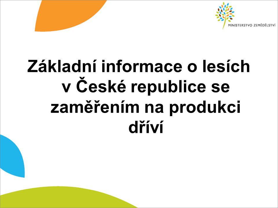 Základní informace o lesích v České republice se zaměřením na produkci dříví