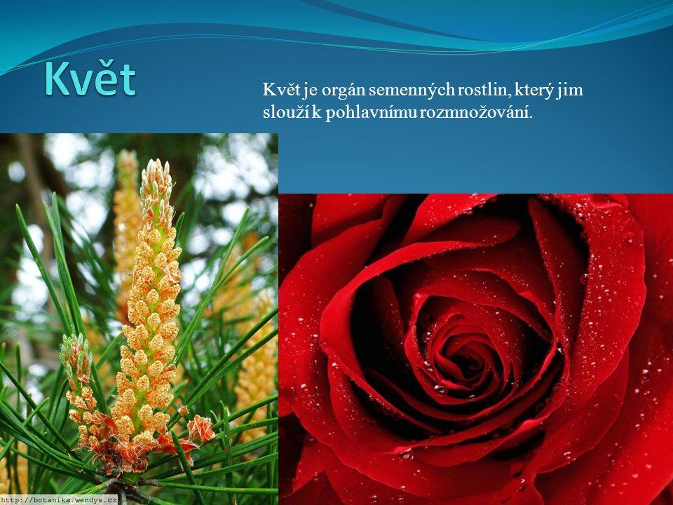 © Letohradské soukromé gymnázium o.p.s. Květ je orgán semenných rostlin, který jim slouží k pohlavnímu rozmnožování.