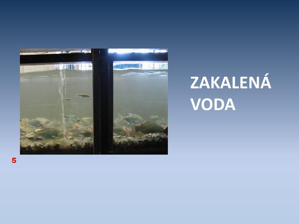 ZAKALENÁ VODA 5