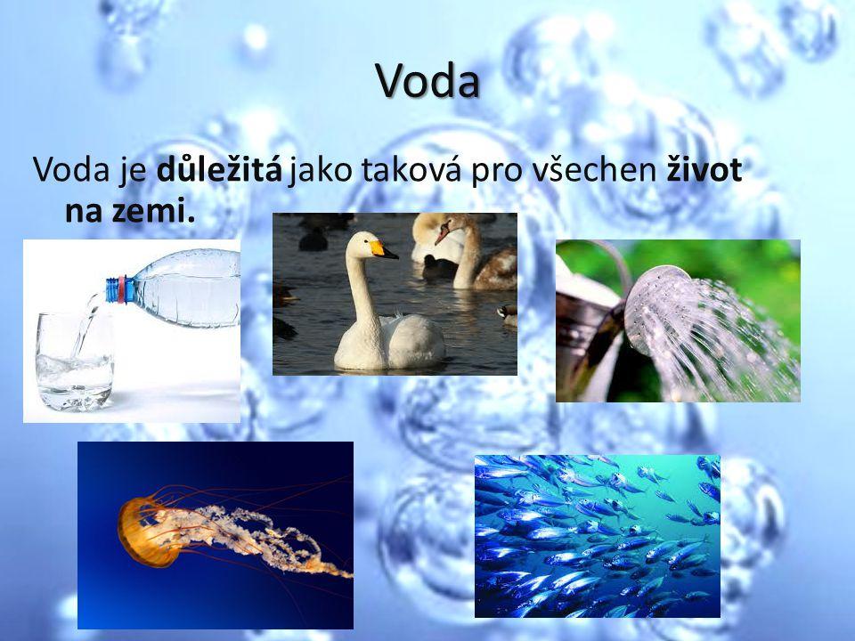 Voda Voda je důležitá jako taková pro všechen život na zemi.