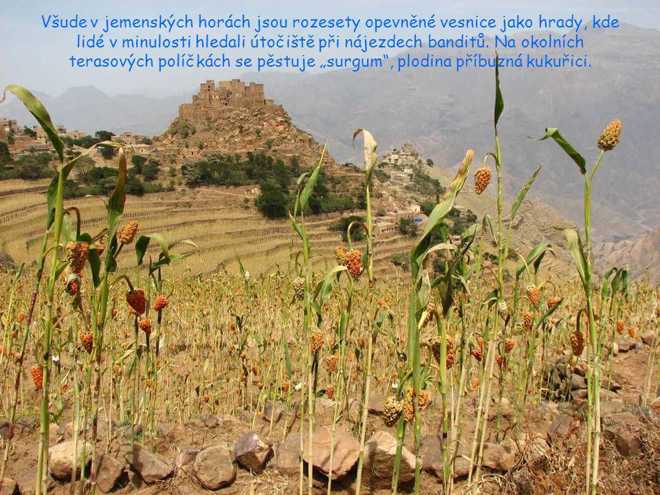 Do Jemenu se jezdí hlavně kvůli horské turistice, hory tu mají opravdu úchvatné. Na snímku je pohled z výšky 3000 m na všudypřítomná terasová políčka.