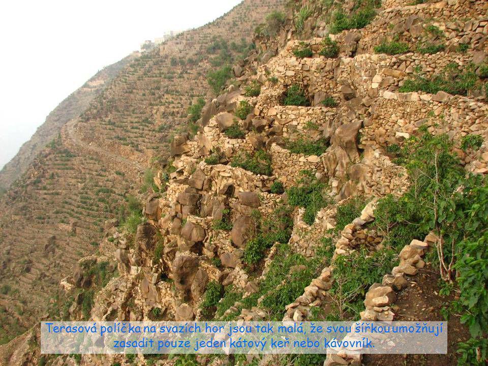 Pohoří Džebel Bura nepatří k nejvyšším, vyniká však svoji strmostí. Každý jeho metr je zužitkován pro zemědělství nebo obydlen.