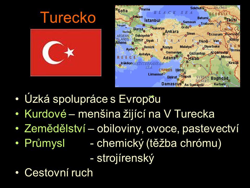 Turecko Úzká spolupráce s Evropou Kurdové – menšina žijící na V Turecka Zemědělství – obiloviny, ovoce, pastevectví Průmysl- chemický (těžba chrómu) -