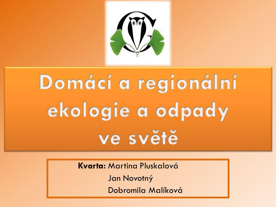 Kvarta: Martina Pluskalová Jan Novotný Dobromila Malíková