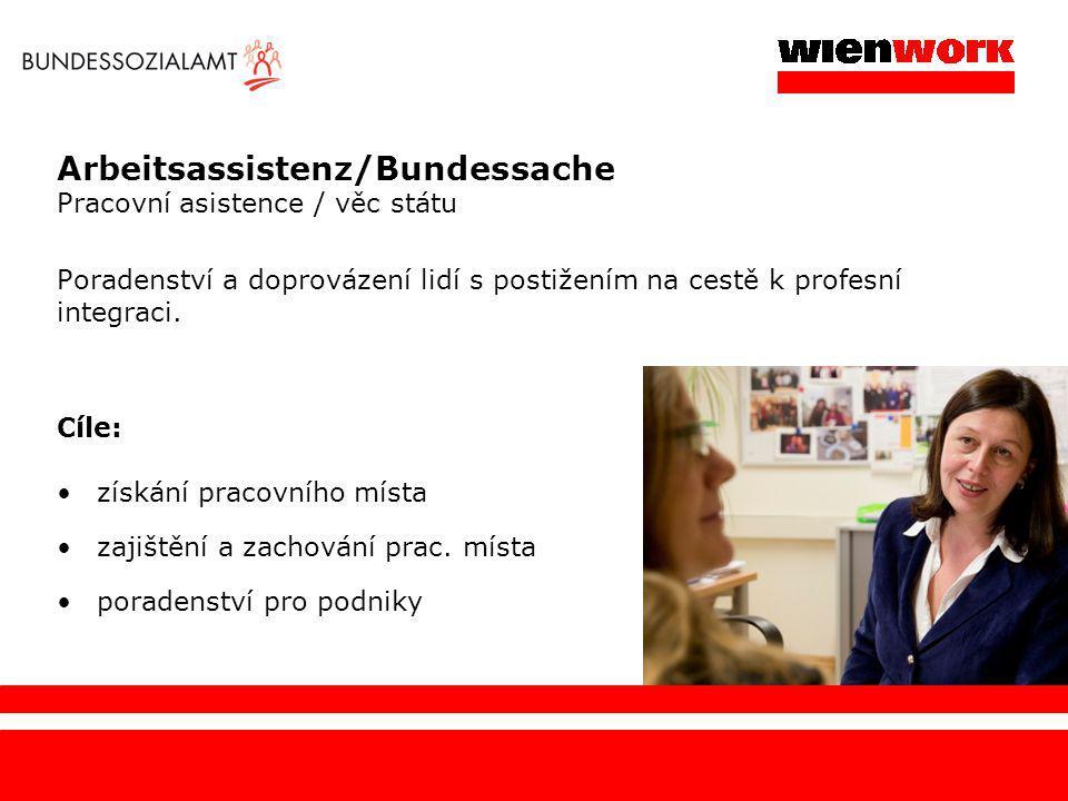 Arbeitsassistenz/Bundessache Pracovní asistence / věc státu Poradenství a doprovázení lidí s postižením na cestě k profesní integraci. Cíle: získání p