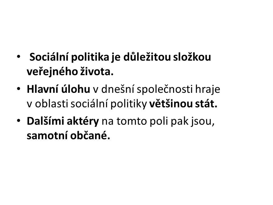 Sociální politika je důležitou složkou veřejného života. Hlavní úlohu v dnešní společnosti hraje v oblasti sociální politiky většinou stát. Dalšími ak
