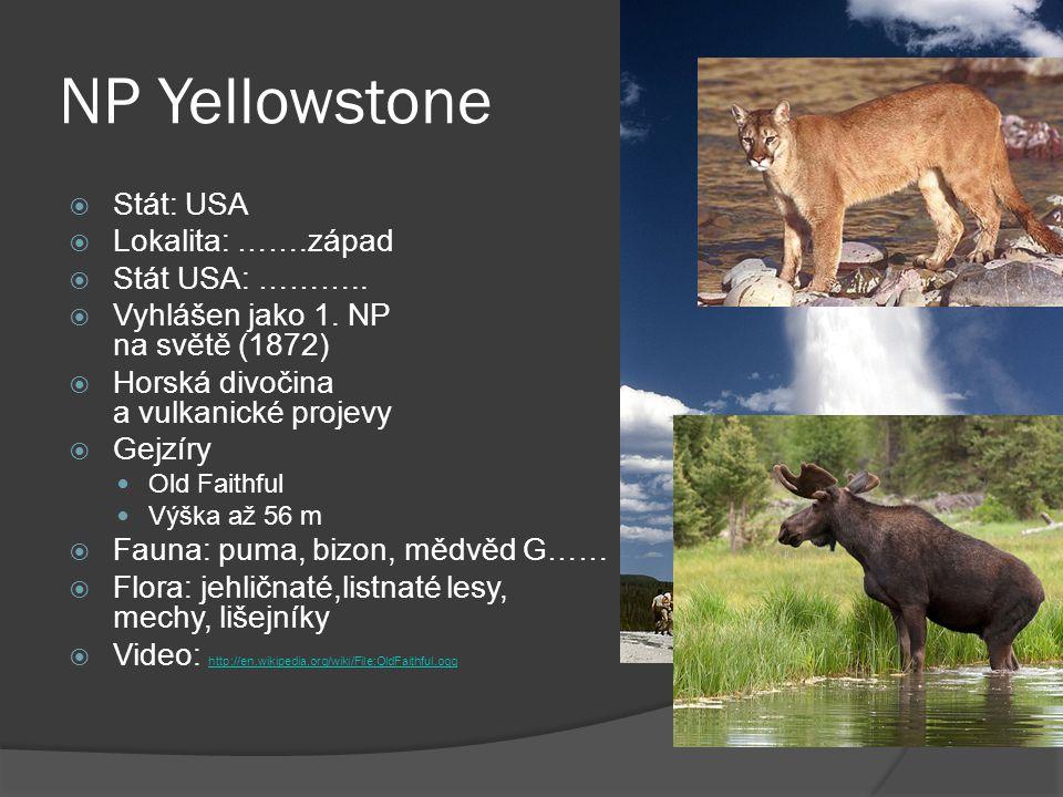 NP Yellowstone  Stát: USA  Lokalita: …….západ  Stát USA: ………..  Vyhlášen jako 1. NP na světě (1872)  Horská divočina a vulkanické projevy  Gejzí
