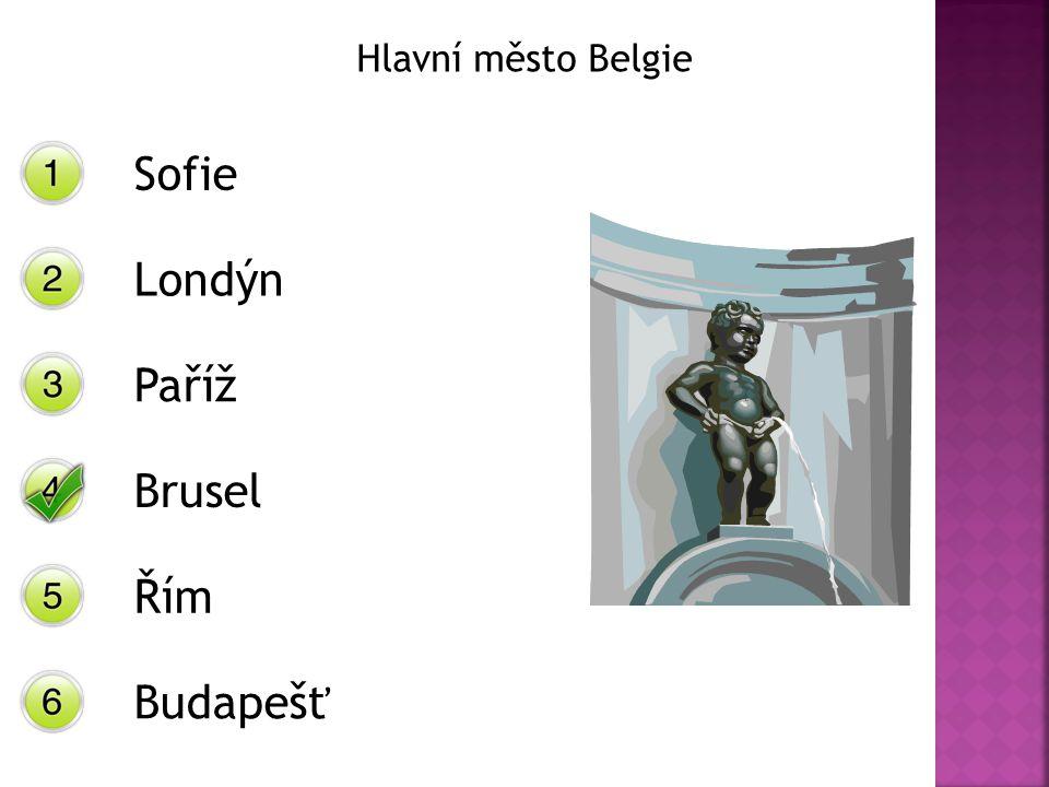 Hlavní město Belgie Sofie Londýn Paříž Brusel Řím Budapešť